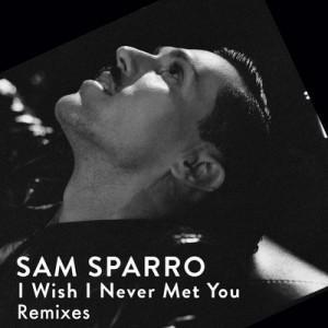 Traduzione ''I Wish I Never Met You'' - Sam Sparro