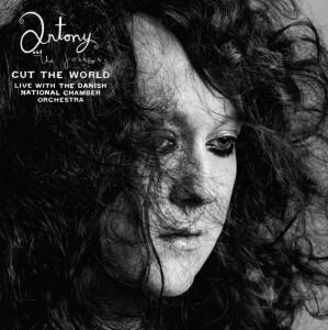 Traduzione ''Cut the World'' - Antony and the Johnsons
